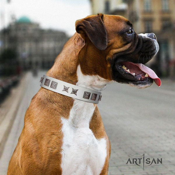 Boxer full grain genuine leather collar with corrosion proof traditional buckle for comfortable wearing