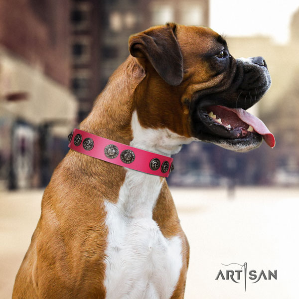 Boxer best quality natural genuine leather dog collar for basic training