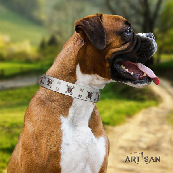 Boxer perfect fit full grain genuine leather dog collar for comfy wearing