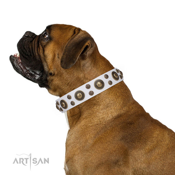 Boxer decorated leather dog collar for comfy wearing