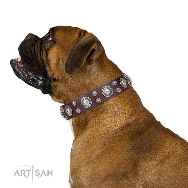 Boxer trendy full grain genuine leather dog collar for fancy walking