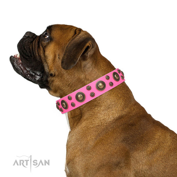 Boxer inimitable genuine leather dog collar for daily use