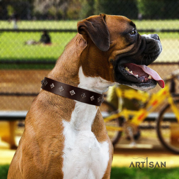 Boxer natural genuine leather collar with corrosion resistant traditional buckle for stylish walking