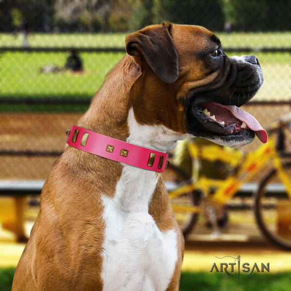 Boxer perfect fit full grain leather dog collar for daily walking