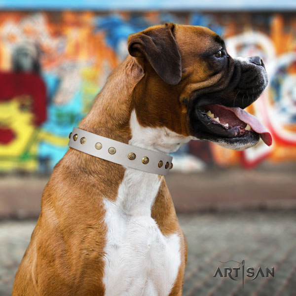 Boxer incredible genuine leather collar with rust resistant hardware