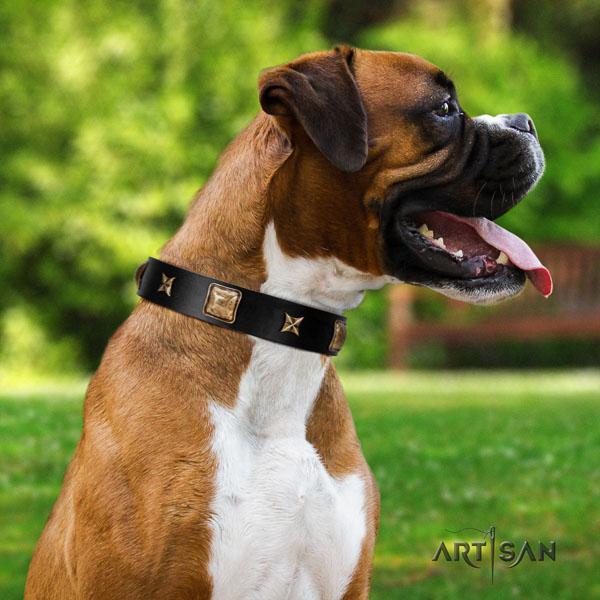 Boxer comfortable full grain genuine leather dog collar for walking