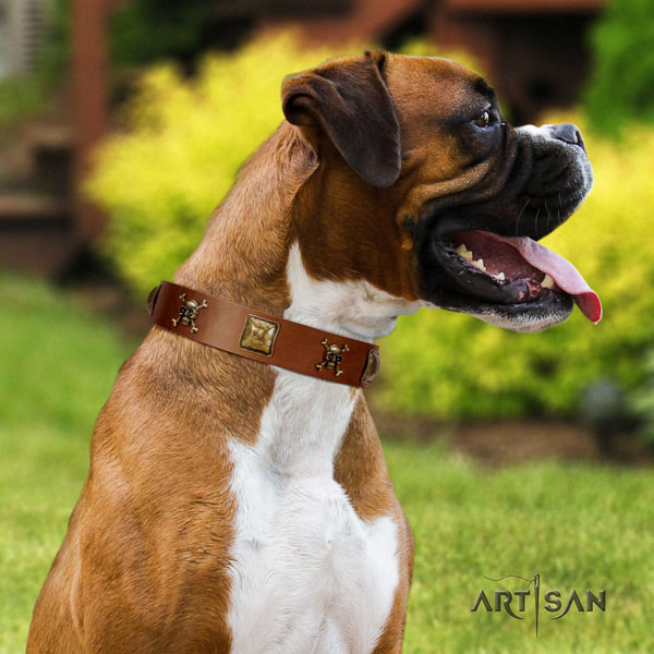 Boxer top notch natural genuine leather dog collar for everyday use