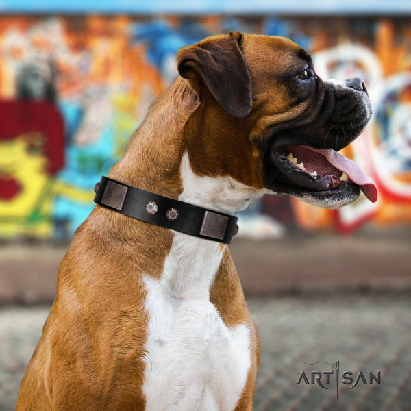 Boxer adjustable full grain leather dog collar for walking