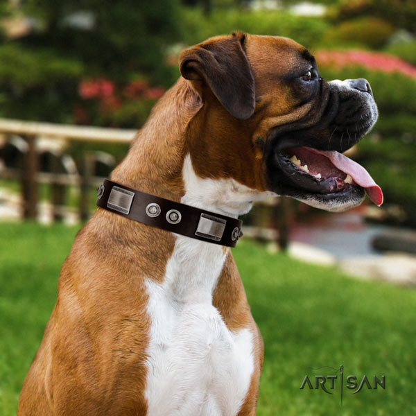 Boxer leather collar with corrosion proof buckle