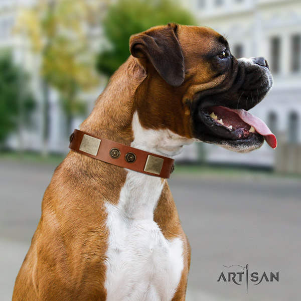 Boxer fashionable full grain genuine leather dog collar for easy wearing