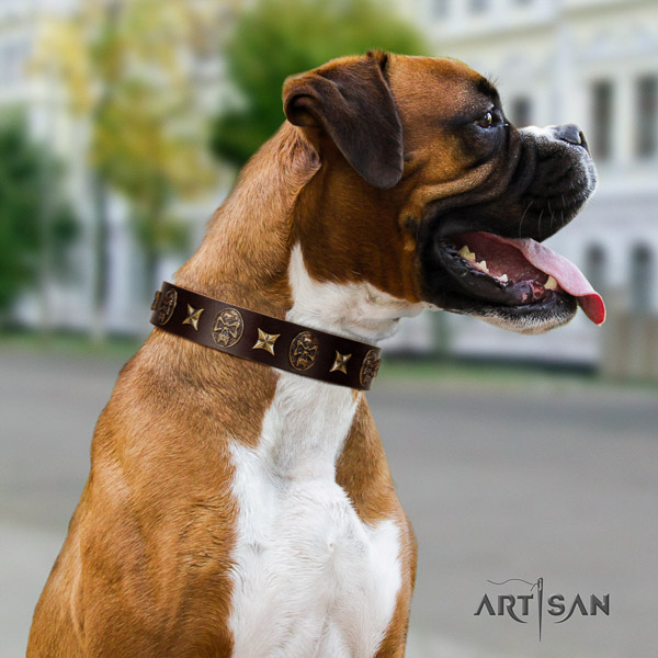 Boxer stylish full grain leather dog collar for easy wearing