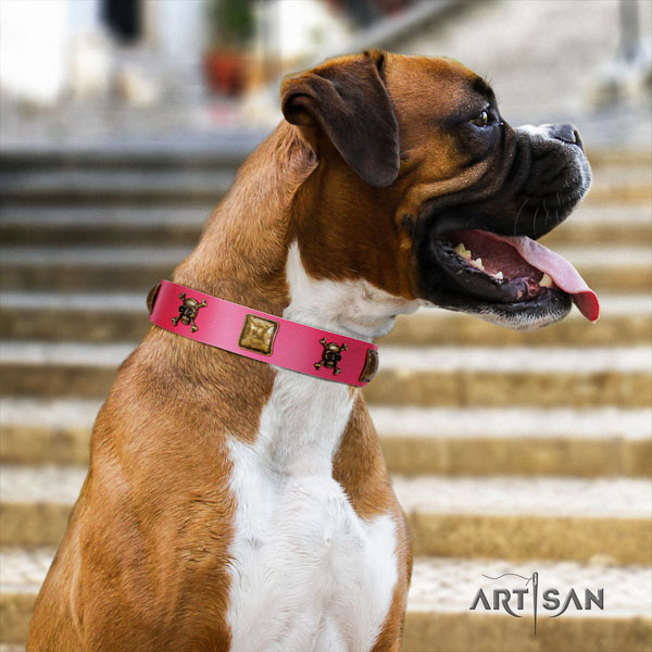 Boxer stylish design full grain leather dog collar for stylish walking