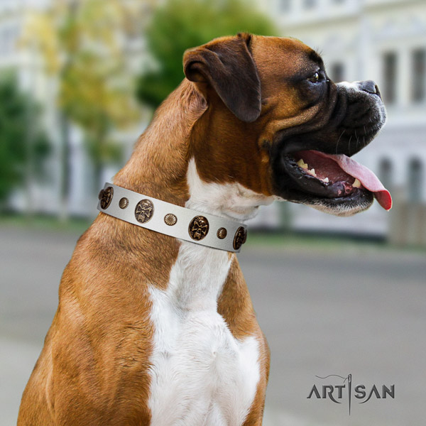 Boxer embellished full grain genuine leather dog collar for easy wearing
