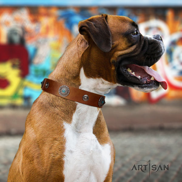 Boxer designer full grain genuine leather dog collar for everyday use