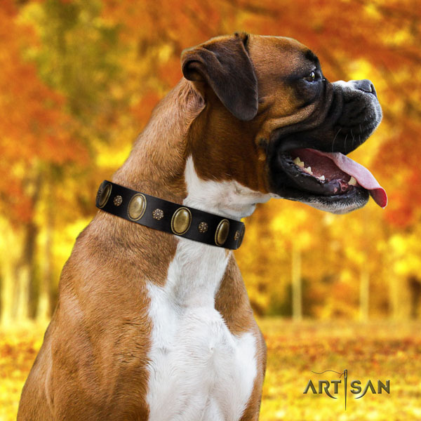 Boxer adorned full grain leather dog collar for easy wearing