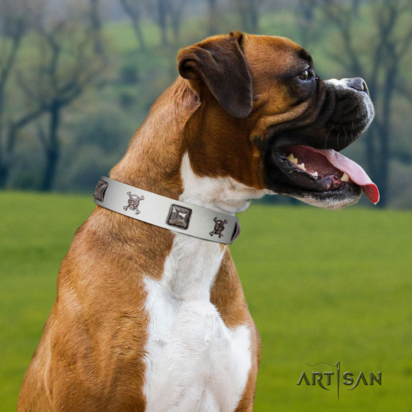 Boxer embellished natural genuine leather dog collar for basic training