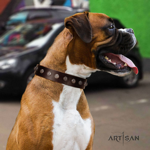 Boxer full grain genuine leather collar with strong hardware for comfortable wearing