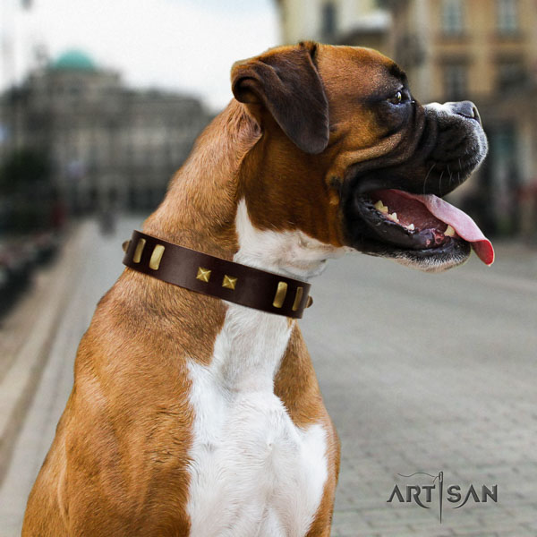 Boxer significant full grain leather dog collar for comfy wearing