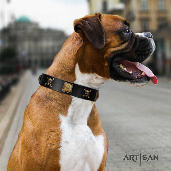 Boxer decorated full grain leather dog collar for everyday walking