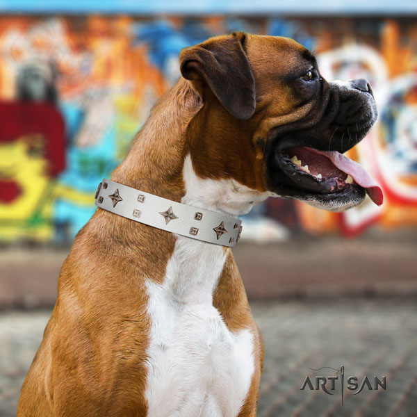 Boxer handmade genuine leather dog collar for daily walking