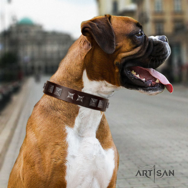 Boxer full grain leather collar with reliable buckle for daily use