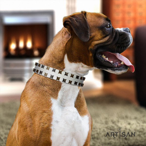 Boxer fine quality full grain leather dog collar for handy use