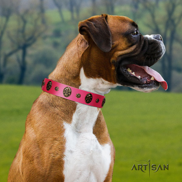 Boxer awesome full grain leather dog collar for daily walking
