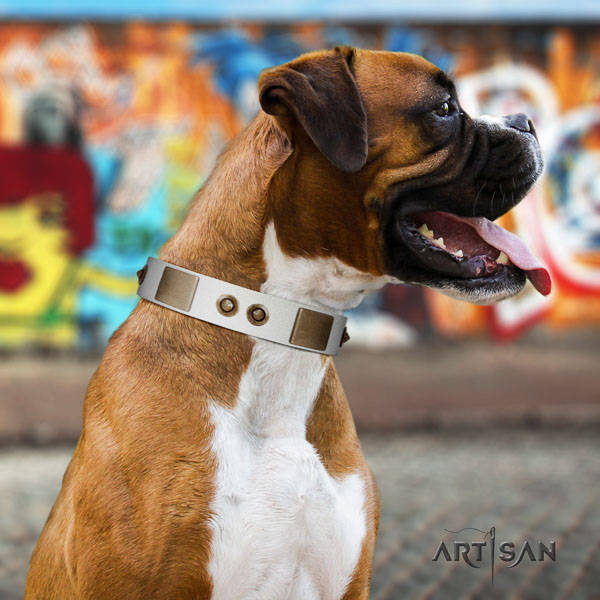 Boxer significant genuine leather dog collar for comfortable wearing