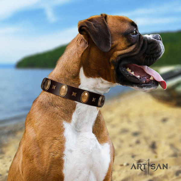 Boxer inimitable genuine leather dog collar for stylish walking