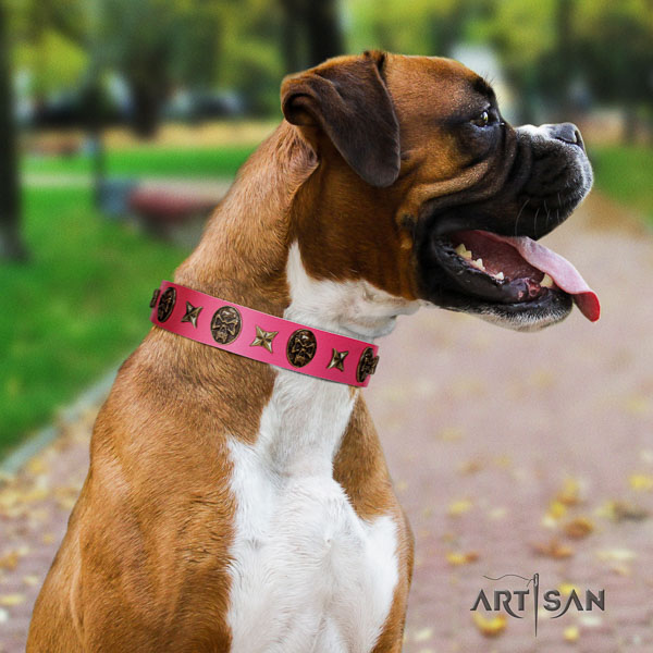 Boxer top quality full grain natural leather dog collar for easy wearing