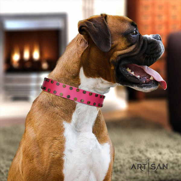Boxer trendy full grain genuine leather dog collar for everyday use