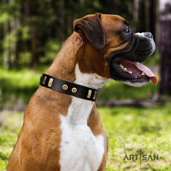 Boxer stylish design full grain leather dog collar for walking