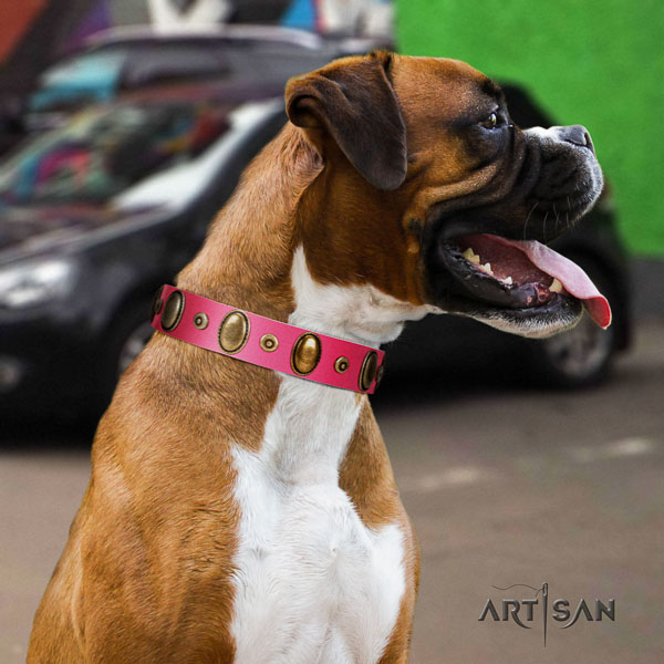 Boxer easy adjustable full grain genuine leather dog collar for fancy walking