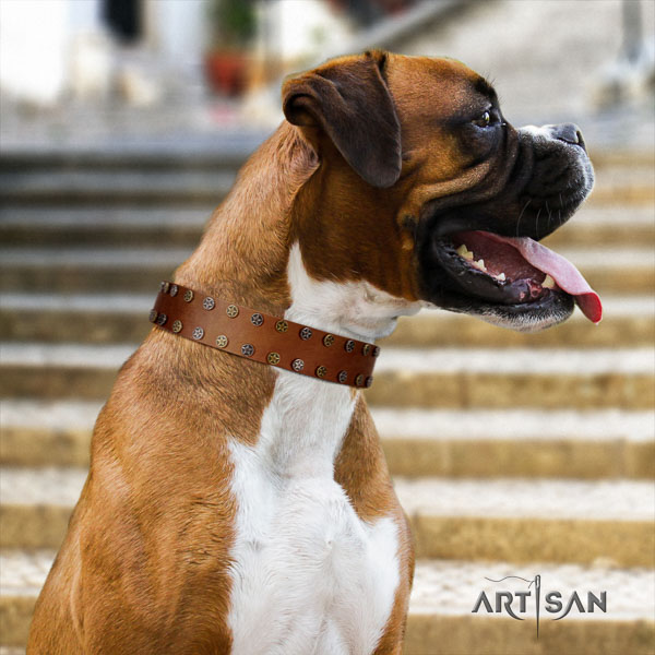 Boxer amazing natural genuine leather dog collar for daily use
