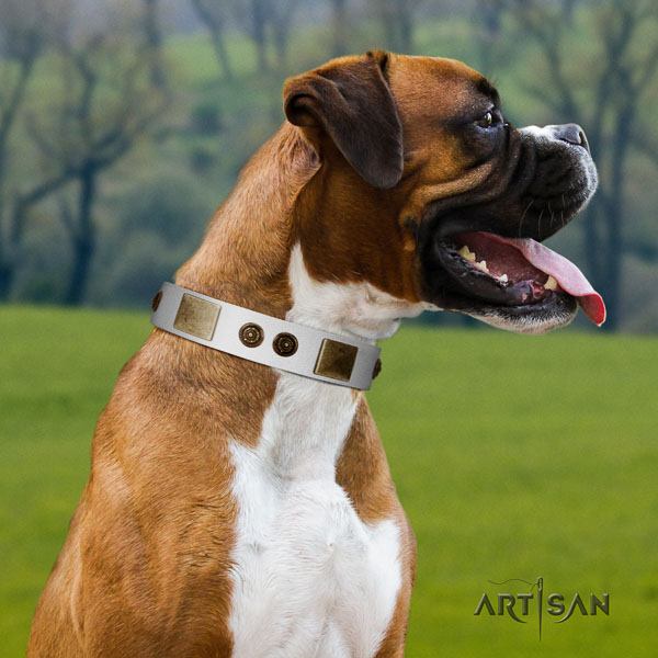 Boxer embellished full grain genuine leather dog collar for comfy wearing