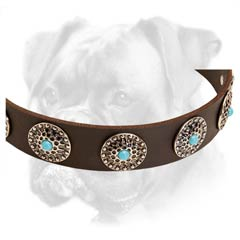 Marvellous Boxer collar with decorative curved circles