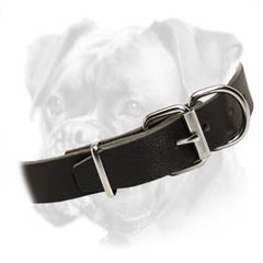 Absolutely non-toxic leather collar for Boxer