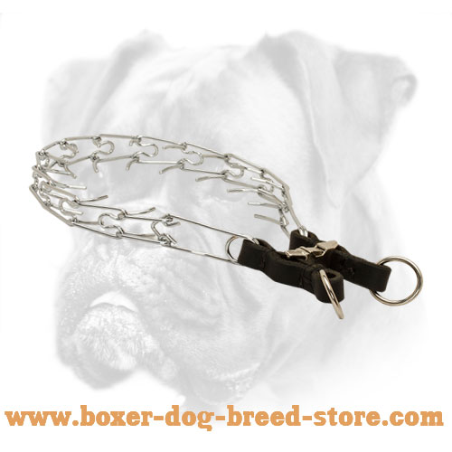 Smooth Boxer Pinch Collar for Long Service