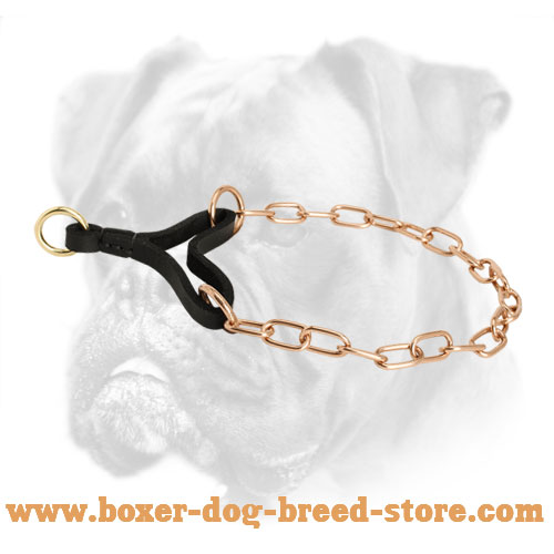 Curogan Boxer Collar with Long Lifespan