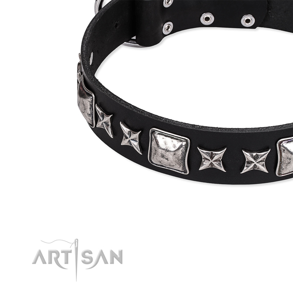 Full grain leather dog collar with studs for comfortable wearing