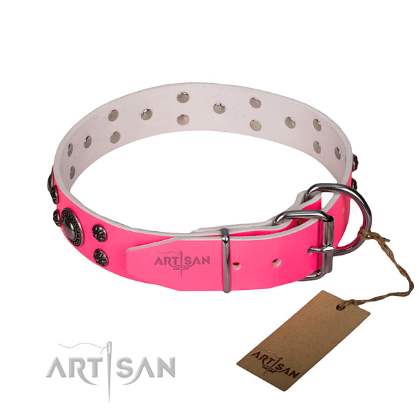 Daily use leather collar with reliable buckle and D-ring