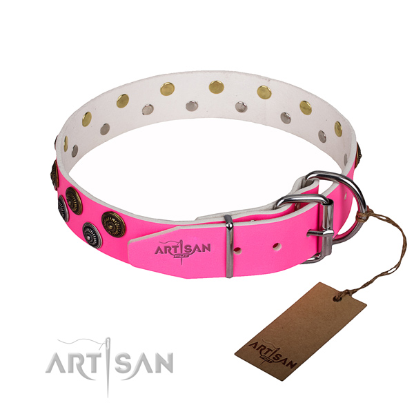 Everyday walking full grain natural leather collar with decorations for your canine