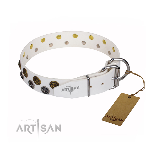 Daily use natural genuine leather collar with studs for your canine