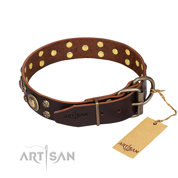 Daily use full grain leather collar with embellishments for your four-legged friend