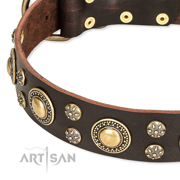 Leather dog collar with top notch studs