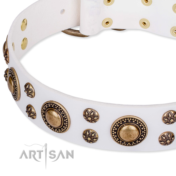 Natural genuine leather dog collar with awesome embellishments