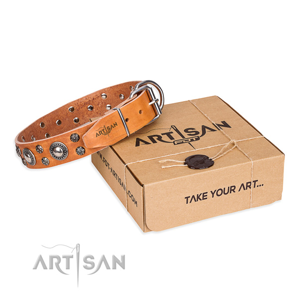 Finest quality full grain natural leather dog collar for everyday use