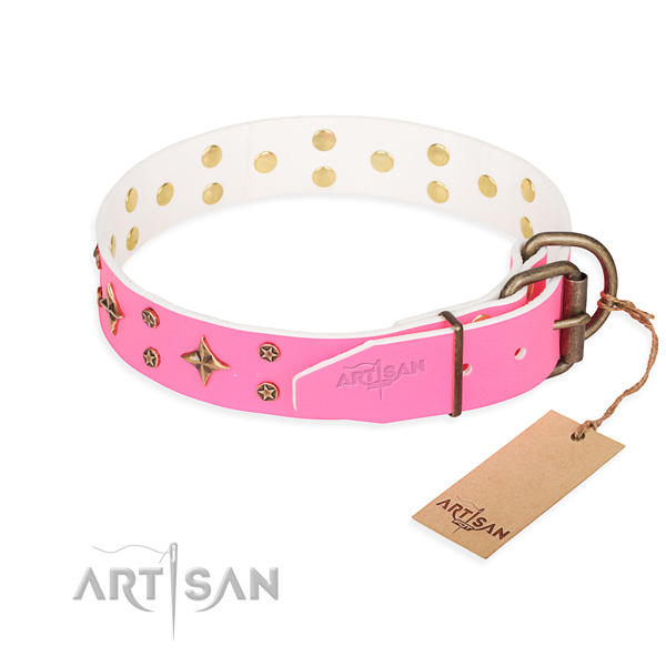Walking full grain leather collar with decorations for your four-legged friend