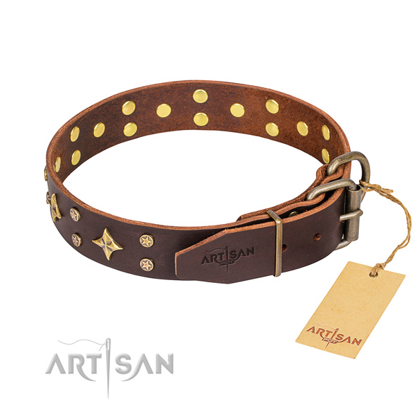 Walking genuine leather collar with embellishments for your canine