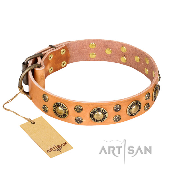 Remarkable genuine leather dog collar for stylish walking